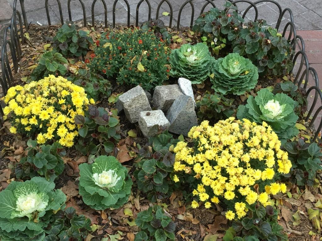 Plantings, Father Fagan Park